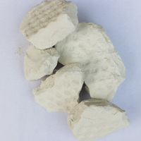 High Quality kaolin china clay white clay