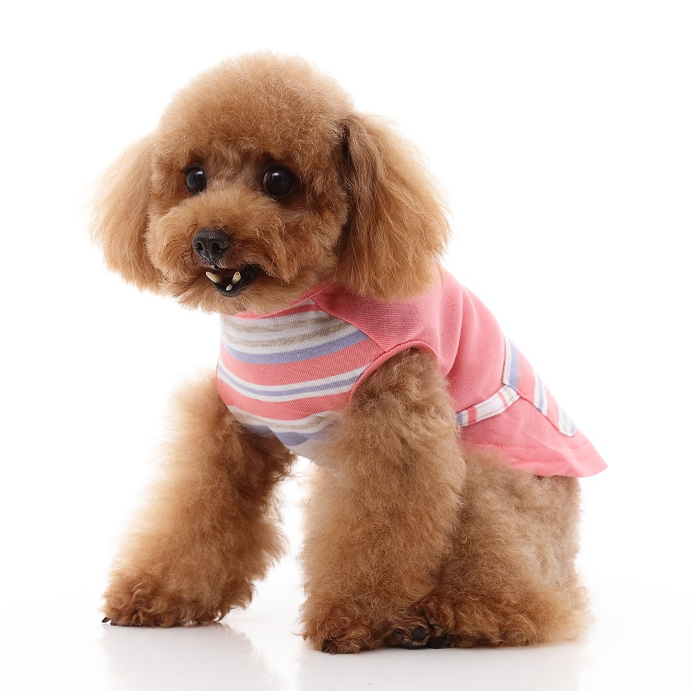 Soft Warm Fall Pet Clothes Dog Winter Clothes Designer Dog Clothes
