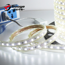 high voltage 220v 5050 led strip with 60leds/m warm pure RGB color for decoration lighting