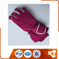 Custom Professional Brand Winter Gloves/Sport Glove