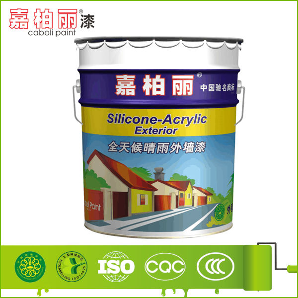 External Wall Building Paint