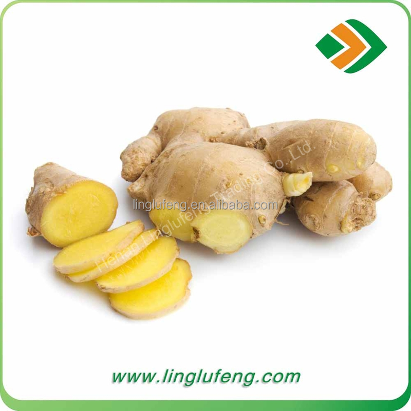 2017 Export Standard New Crop Chinese Fresh Ginger with super quality