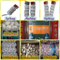 Fresh Garlic in Packages ( 2p/3p/4p/5p/250g/500g )