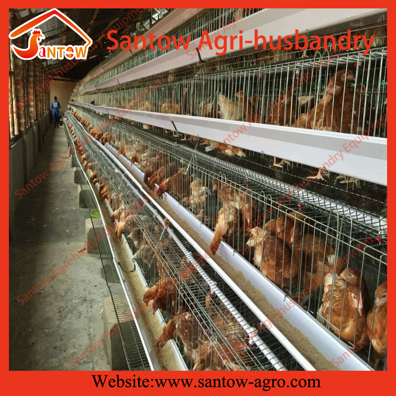 Fashionable baby broiler chicks cage for sale