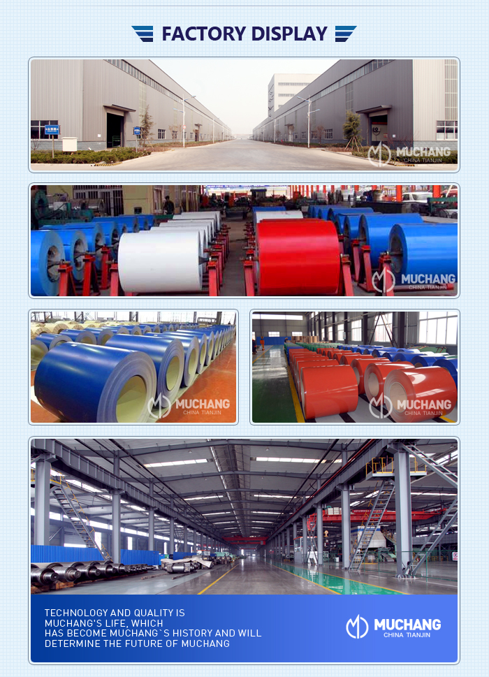 RAL ppgl color coated steel coil ppgi steel coils