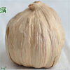 /product-detail/recommend-see-larger-image-china-bnp-provides-100-natural-best-aged-black-garlic-extract-add-to-my-cart-add-to-my-favorites-60297195006.html
