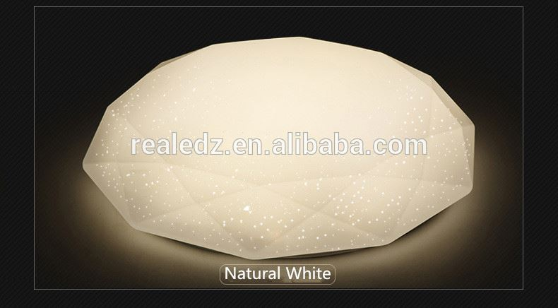 Clear Curve ring60w Ceiling Light