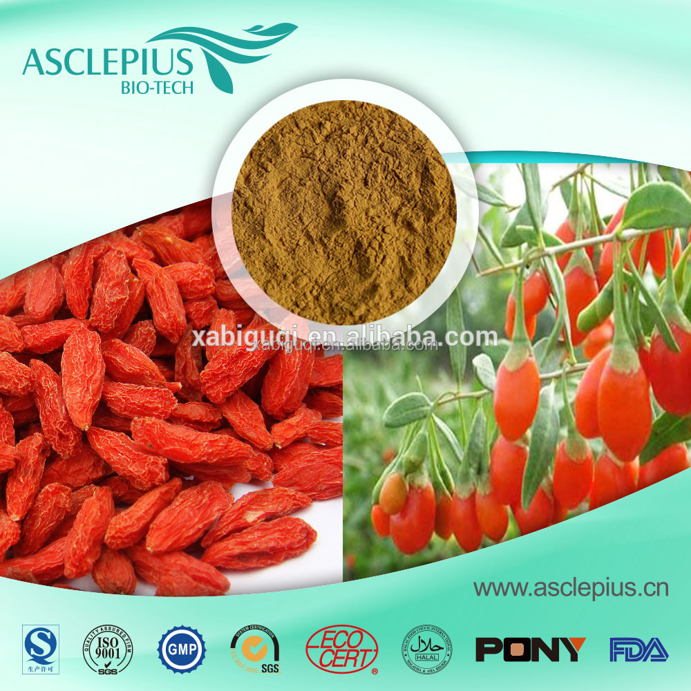 ASCLEPIUS wholesale Barbury Wolfberry Fruit P.E.