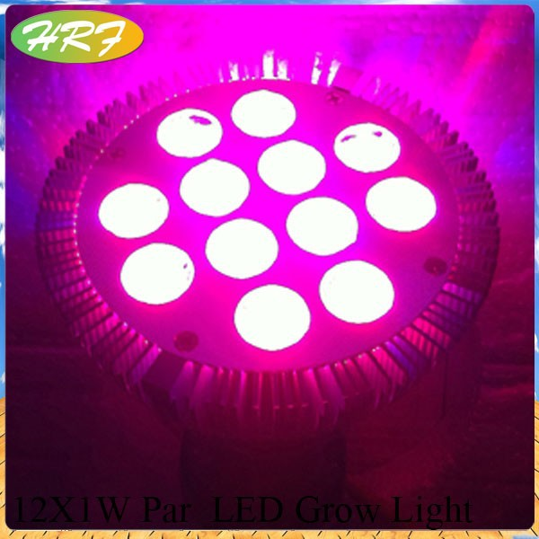 herifi 1W led chips 12W Par38 Full spectrum Hydroponic Lamp LED grow light 12 watt led grow light
