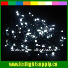 Top quality Waterproof 240V holiday decorative lights led led outdoor christmas lighting