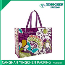 foldable reusable Non woven shopping bag printed design with handle