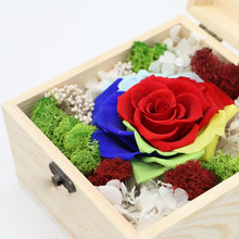 Wholesale Preserved Rose Flowers Flower Dried Hydrangea