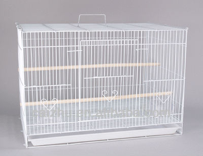 "24x16x16""H Finch Parakeet Canary Cockatiel Bird Cage"