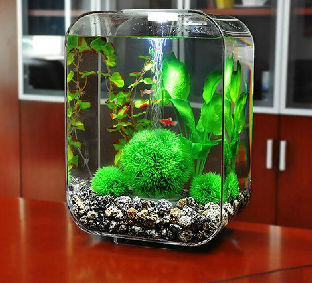 hochglanzpoliert couchtisch aquarium pmma fisch quallen