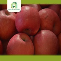 bulk fresh fruit with CE certificate
