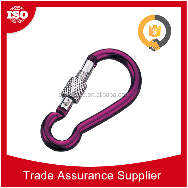 CHDS51 Free sample available various size and shape metal carabiner lighter, fashion carabiner with keychain