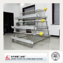 For Africa poultry market design layer chicken cages