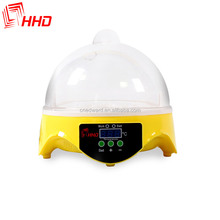 HHD Wholesale educational toys for kids/Quail Egg Incubator/educational toys for teens