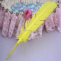 25-30cm turkey wing feather for crafts