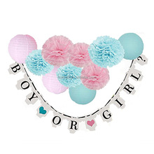 Boy or Girl Banner Tissue Pom Poms Paper Lanterns Baby Shower Party Decorations