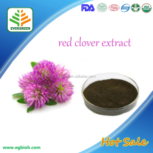 FDA,KOSHER Certificated Red Clover Extract/ Red Clover Flower Extract/Red Clover Extract Powder