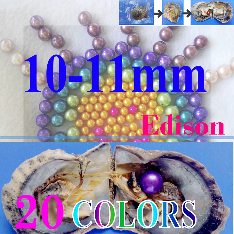 giant 10-11mm Colored Edison round grade AA pearl in oyster with vacuum packing <strong>01</strong>