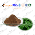 13 years factory mafacture of Artemisia argyi Extract /worm wood leaf extract