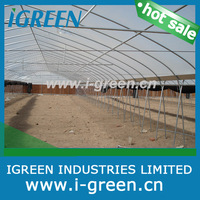 plastic greenhouses for sale