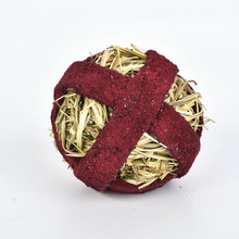 Fitness Foodball beetroot for Rodent treats