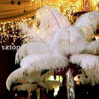 Snow White Ostrich Feather Wing Plume/Drab for Wedding Centerpiece Decoration