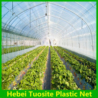 new PE transparent 120 micron plastic film for greenhouse