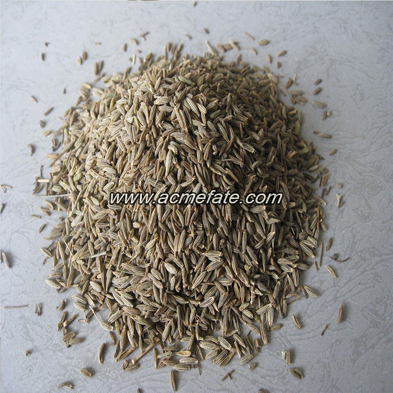 Chinese Spices & Herbs Cumin Seeds
