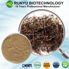 Buy EXW price free sample Spreading Hedyotis Extract, Hedyotis Diffusa willd p.e.