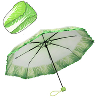 new inventions in china fashion umbrella for plants