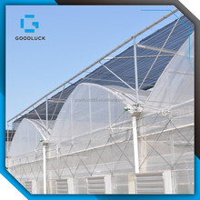 multi span Agricultural film greenhouse for sale