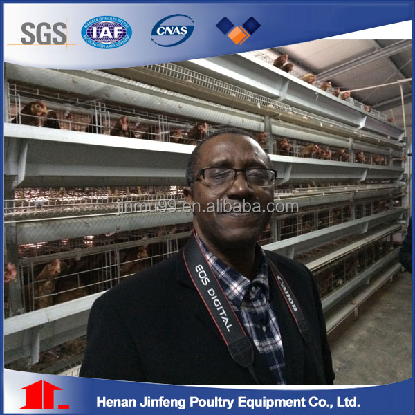 Hot design poultry farm construction with chicken cage for poultry farm