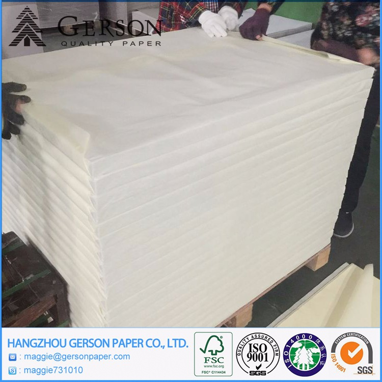 Packing Paper, Paper Plate Raw Material 300gsm Aa Grade Coated Duplex Board Grey Back Price