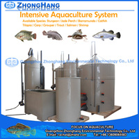 Aquaculture System Fish Farming of Barramundi Fish Farm