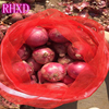 /product-detail/fresh-cheap-onion-wholesale-price-for-bulk-chinese-onion-60489139229.html
