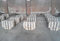 Manufacture supply COPPER INGOT 99.99%
