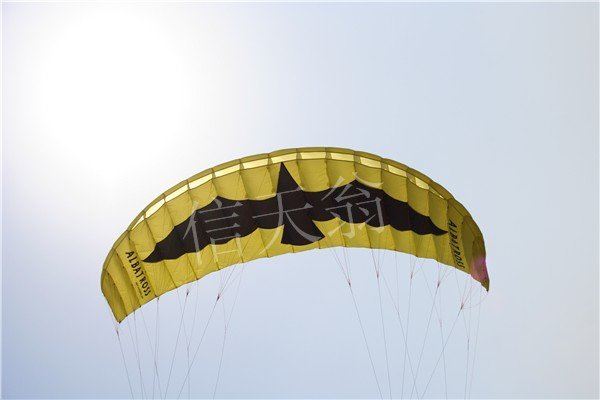 5.0M2 power traction kite Pro kite with lines and handles from Albatross