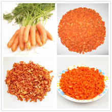 Bulk dried dehydrated carrot without sugar