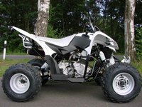 ATV Aeon Cobra 350