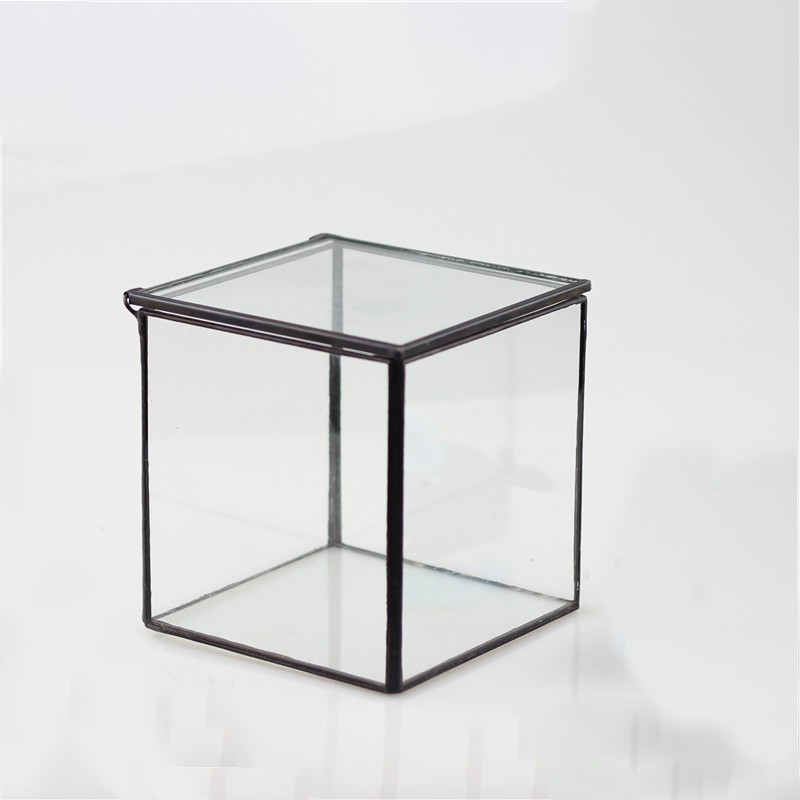 Indoor decoration air plants cube shape black frame Geometric Glass Terrarium Tabletop Vase