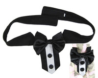 Pet Supply Dog Accessories Dog Bow Tie Collar Black Wedding Suit