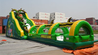 Newest design giant inflatable slide for sale