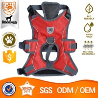 OEM Service Polyester Quality Leather Dogs Body Collars And Harnesses