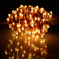 Waterproof wholesale adapter powered outdoor decorative copper wire Christmas decorations led string light