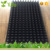 Wholesale Cheap nursery 242 cell (holes) plastic seedling tray for tobacco planting