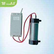 TCB-25500A2V(W) ozone tube 500mg ozone generator for water sterilizer vegetable washer parts